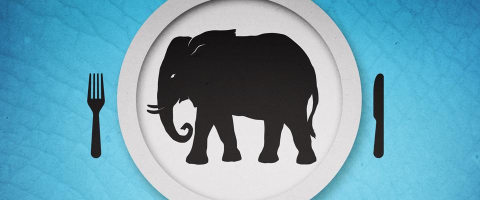 LOGO-elephant-series-1