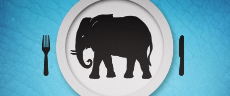 LOGO-elephant-series-1